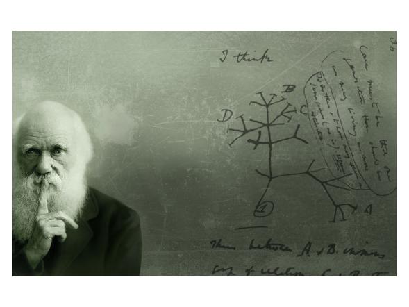 Titelbild: Institut für Ökologie und Evolution