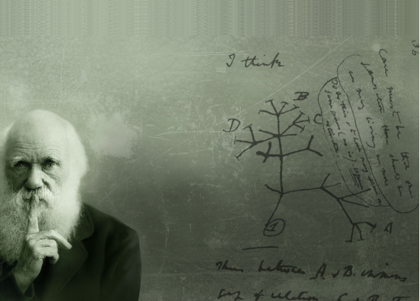 Titleimage: Institute of Ecology and Evolution
